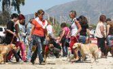 C.D. Adiestramiento canino Camacho