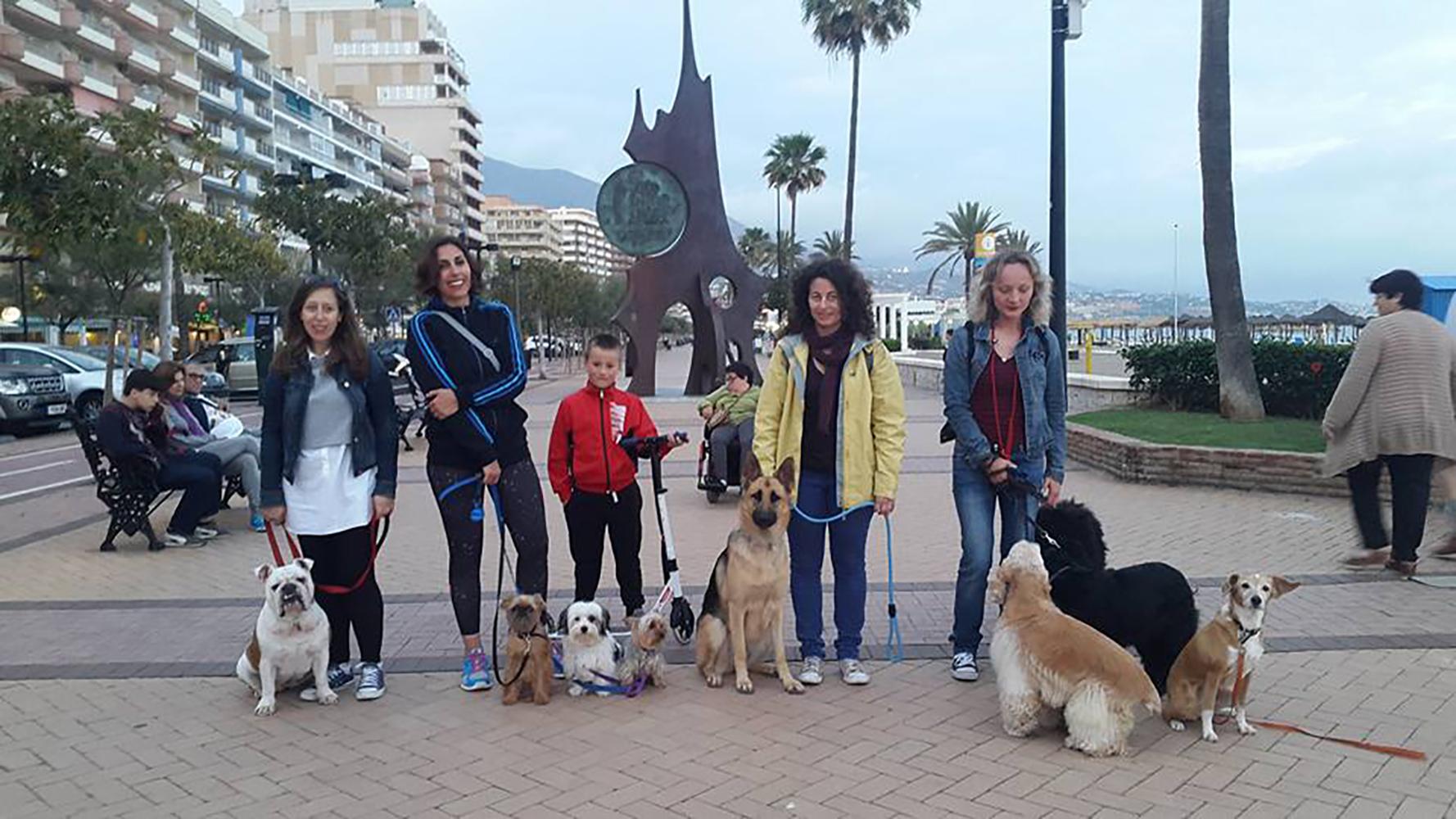 paseos-adiestrar-perros-malaga