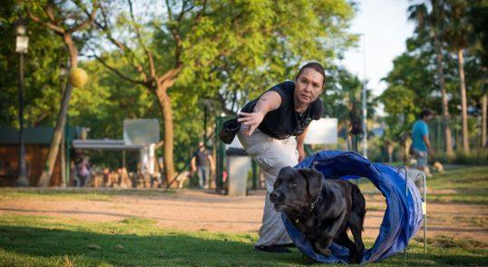 Adiestramiento canino para todas las razas y edades