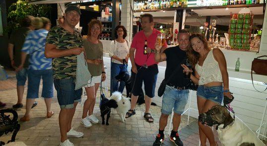 Adiestramiento Canino en grupo, Domicilio en Fuengirola y provincia de Málaga