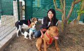 Guardería, residencia y adiestramiento canino Fuengirola, Mijas.