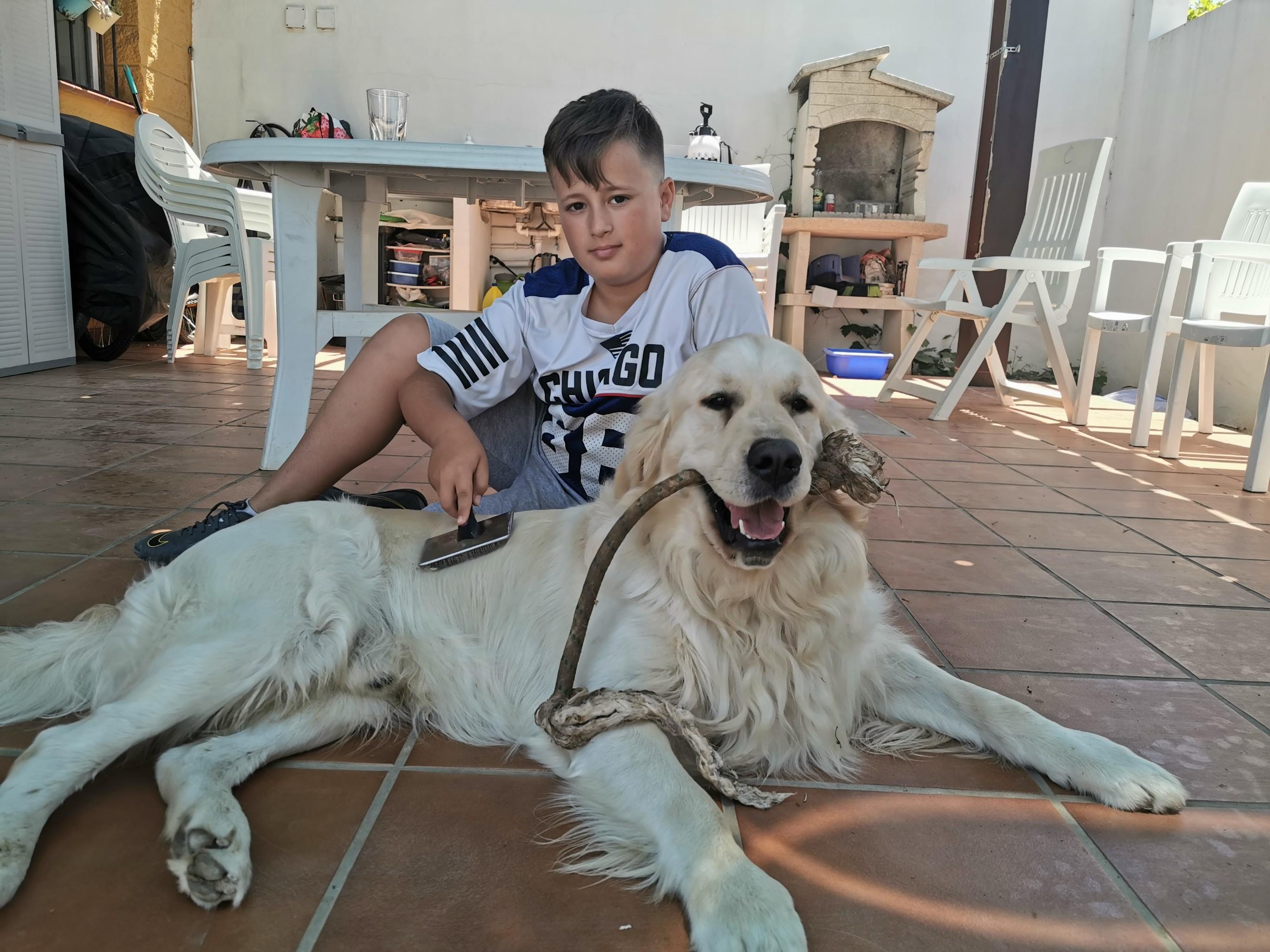 Adiestramiento canino Camacho Mijas, Fuengirola, Benalmádena, Marbella (1)