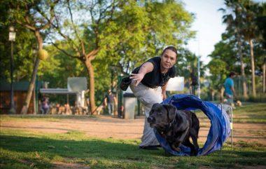 📢📢¡ATENCIÓN! 📢📢Se abre el plazo para la inscripción de adiestramiento canino 2020 en grupo.